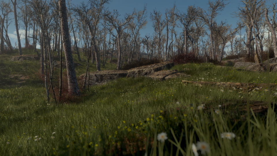Grasslands mod in Fallout 4